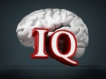 Human brain and IQ word on black background. 3D illustration